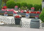 terrasse en fleur