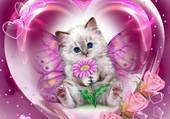 un chaton papillon