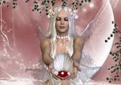 perle de culture dans son coquillage