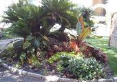 jardin de menton