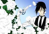 Sebastian Michaelis : roses blanches