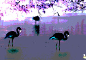 Puzzle lac aux oiseaux