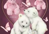 ourson rose et ourson blanc