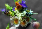 Une pincée de fleurs