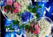 papillons colombes et coeur de fleurs