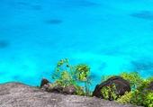 Bord de mer des Seychelles