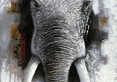 Éléphant d'Inde