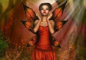 un rayon de soleil sur mes ailes
