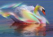 Superbe signe aux couleurs vivent