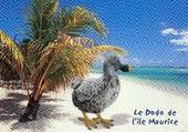 Le dodo de l'île Maurice