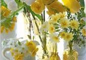 Harmonie de jaune