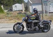 Harley 5
