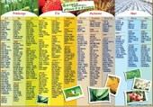 Calendrier des Semis et Plantations