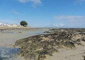 plage du viel marée basse