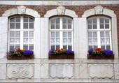 Fenêtres fleuries