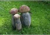 Puzzle Le temps des champignons