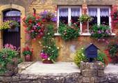 Très jolie façade fleurie
