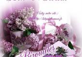 Puzzle couleur lilas