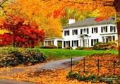 Puzzle Une maison aux States