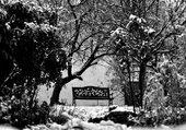 Banc dans la neige