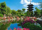 Vue sur jardin Japonais