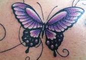 Puzzle tatouage papillon