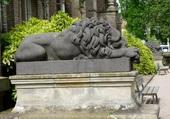 Lion de la maison romaine