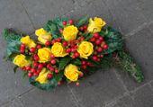 Belles roses jaune