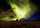 Puzzle aurore boreale