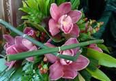 Montage fleuri