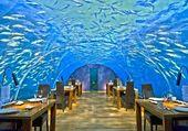 Restaurant subacquatique