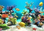 Puzzle fond de mer