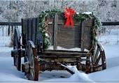 chariot dans la neige