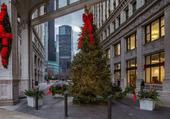 CHRISTMAS TREE AND BUILDING