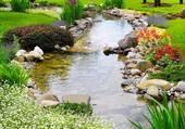 Puzzle Bord de ruisseau fleuri