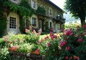 Maison fleurie en Juin
