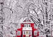 Maison suédoise dans la forêt
