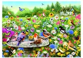 oiseaux dans le jardin