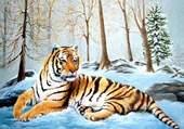 Puzzle tigre dans la neige
