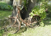 Bicyclette ancienne