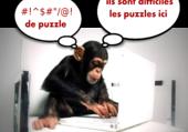 Puzzles difficiles - Humour