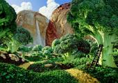 le monde du brocolie
