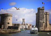 Port La Rochelle et gros zoiseau