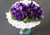 Violettes de Toulouse .