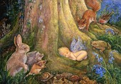 Miracle dans les bois