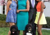 Puzzle Une belle famille