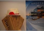 Accordéon de bois et chapeau
