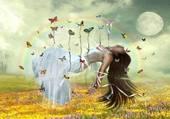 Puzzle suspendu par des papillons