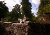 le cavalier sur le pont