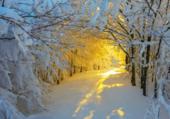 Puzzle Féérie hivernale .